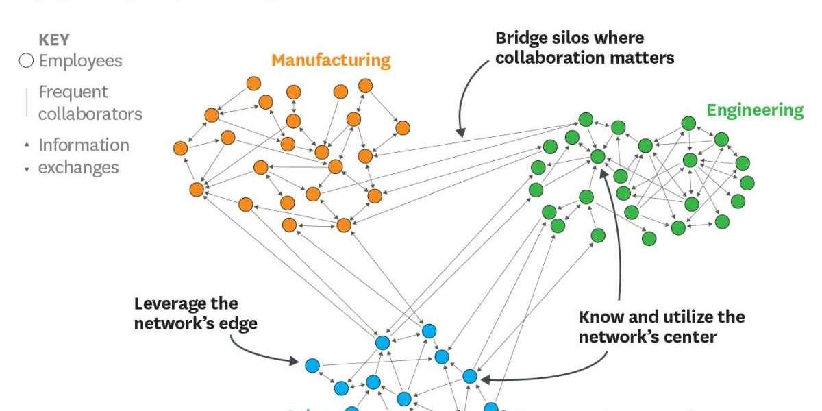 Organization Relationship Analysis